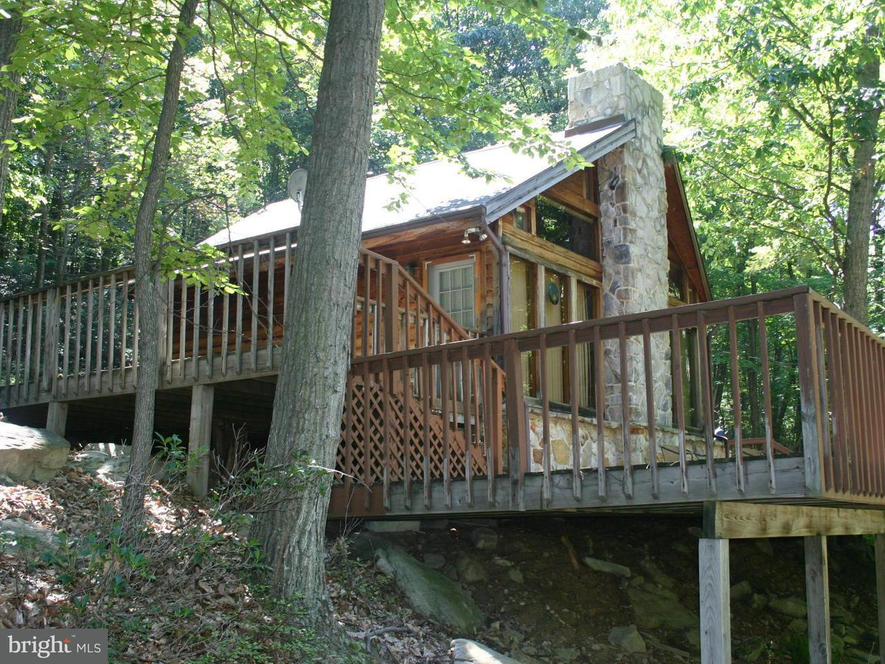 Single Family for Sale at 1342 Red Fern Ln Capon Bridge, West Virginia 26711 United States