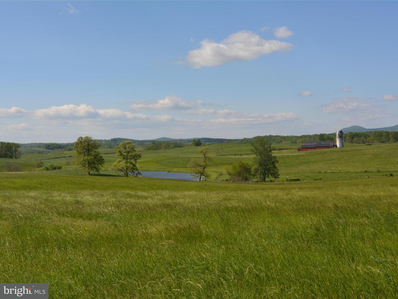 Land for Sale at 2223 Rokeby Rd Upperville, Virginia 20184 United States