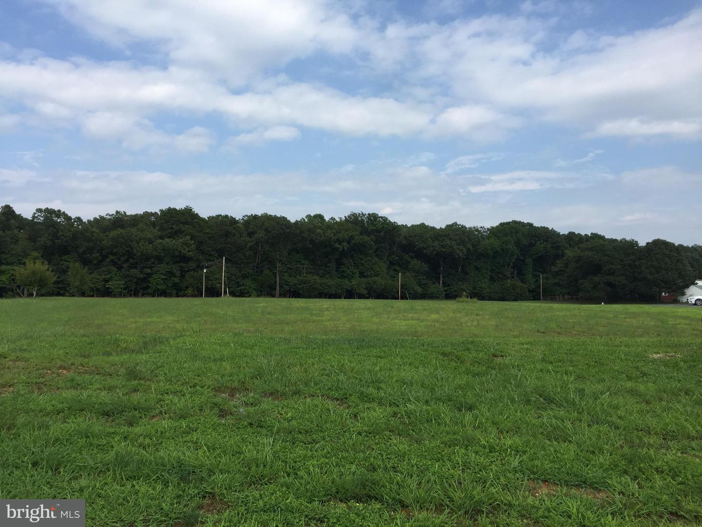 Land for Sale at 9946 Sodus Ct Faulkner, Maryland 20632 United States