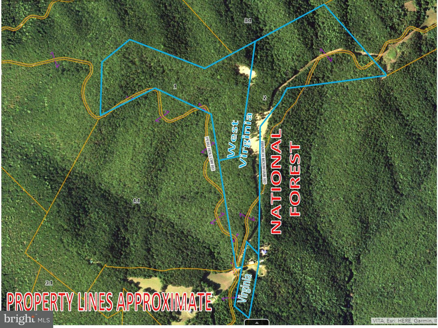 Land for Sale at 0 Branch Mountain Ln Bergton, Virginia 22811 United States