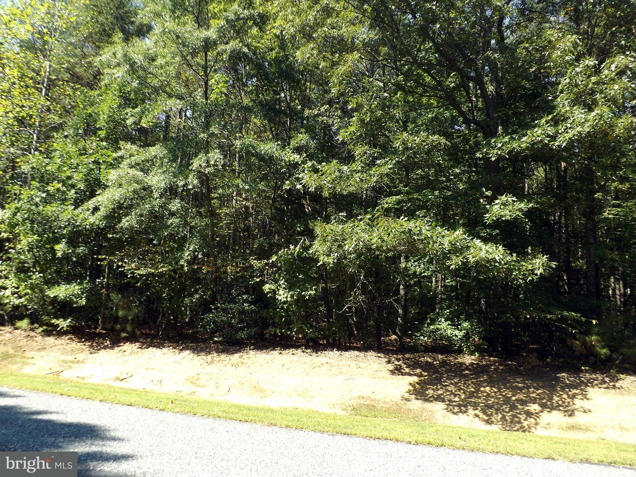 Additional photo for property listing at 117 Spruce Dr  Mineral, Virginia 23117 United States
