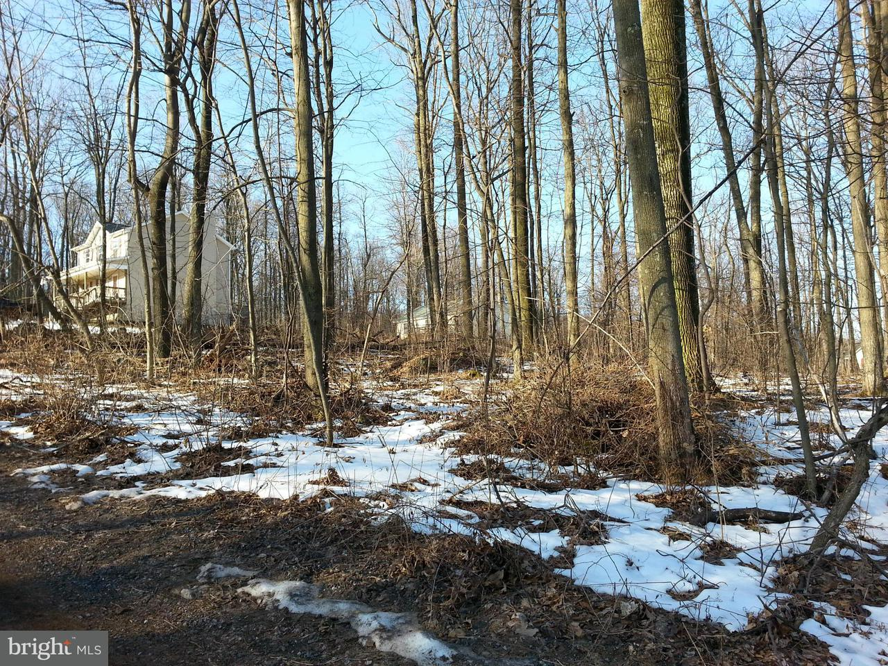Additional photo for property listing at Hunters Ave  Chester Gap, Virginia 22623 United States