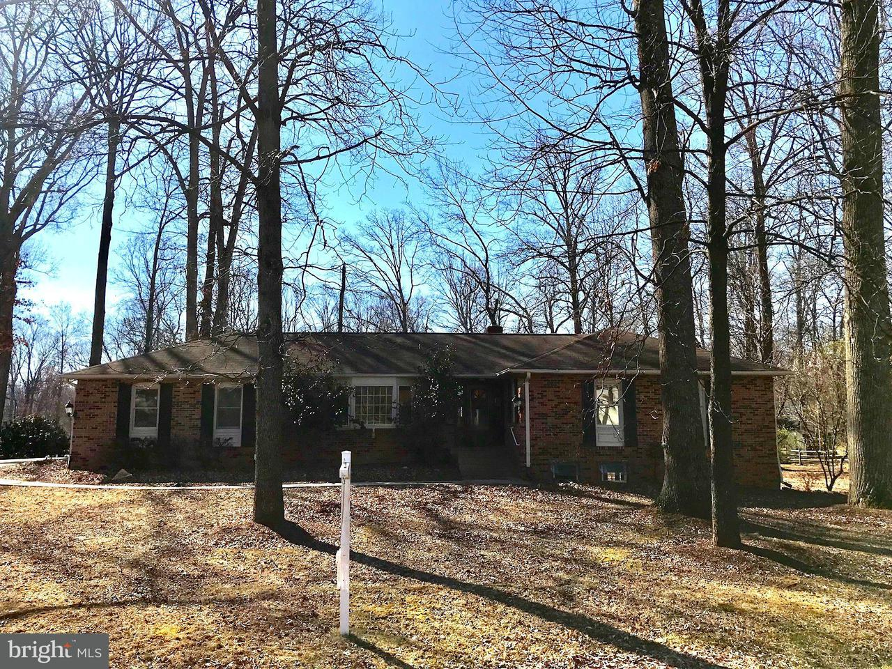 Single Family Home for Sale at 10301 Elizabeth Street 10301 Elizabeth Street Great Falls, Virginia 22066 United States