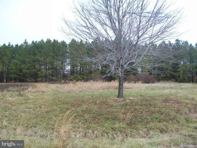 Land for Sale at Homestead View Ct Worton, Maryland 21678 United States