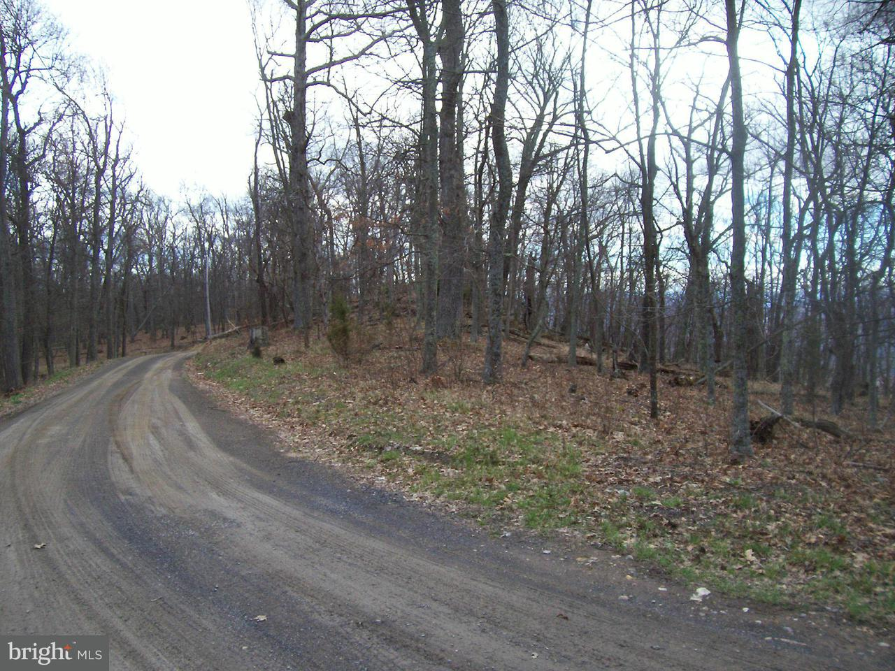 Additional photo for property listing at Lot 8, Sec. 2 High Knob  Old Fields, West Virginia 26845 United States