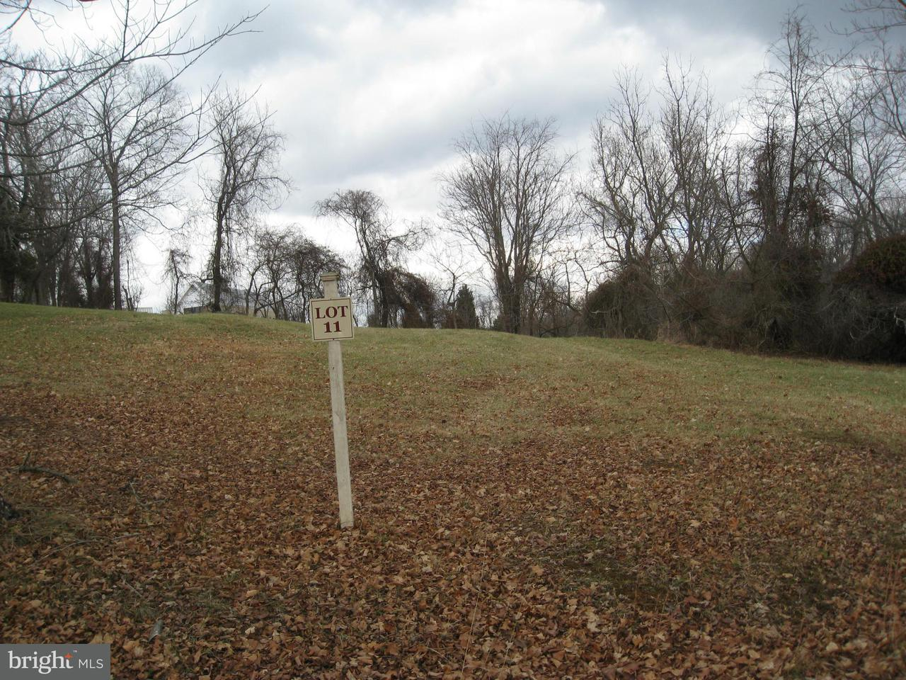 Land for Sale at 41366 Common House Ln Lovettsville, Virginia 20180 United States