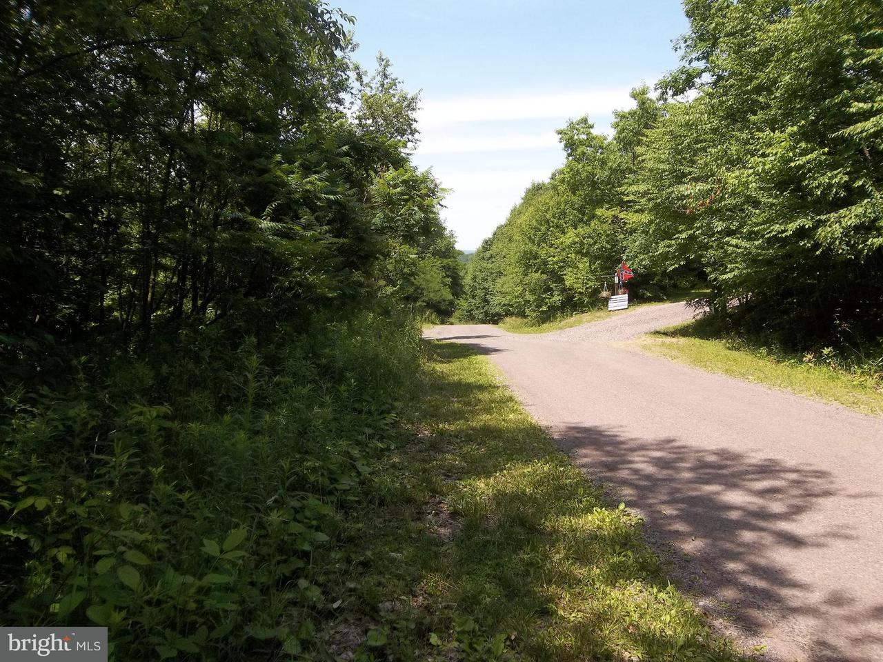 Land for Sale at Westview Crossing Rd Grantsville, Maryland 21536 United States