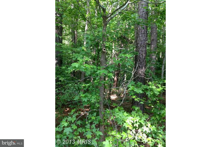 Additional photo for property listing at 0 Not On File  Hague, Virginia 22469 United States