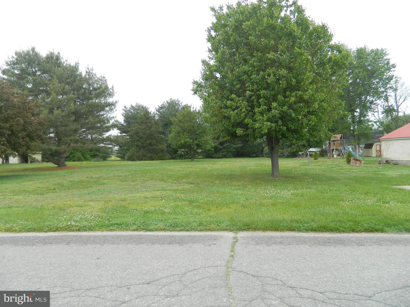 Land for Sale at Academy St Greensboro, Maryland 21639 United States