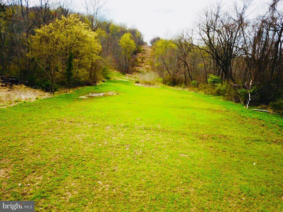 Land for Sale at Manor Rd Boyce, Virginia 22620 United States