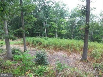 Additional photo for property listing at Highland Ridge Road  Berkeley Springs, West Virginia 25411 United States