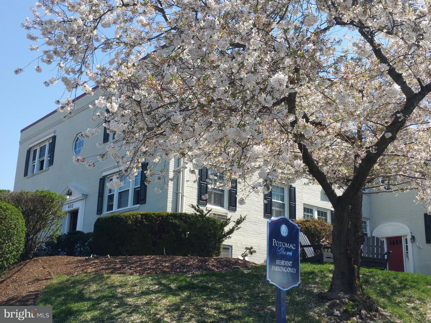 Other Residential for Rent at 402 Bashford Ln #101 Alexandria, Virginia 22314 United States