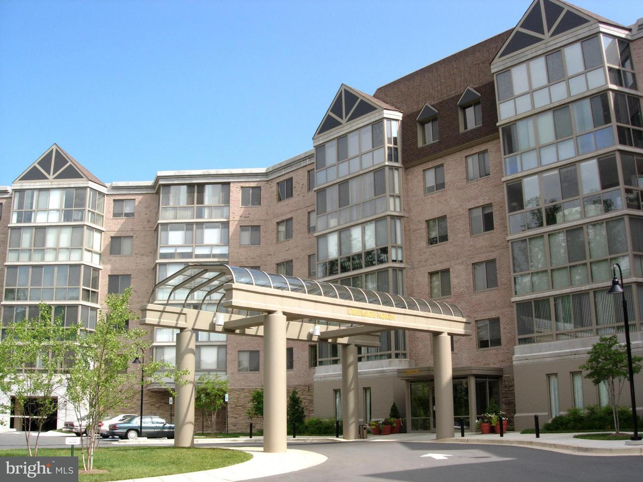 Condomínio para Venda às 2901 Leisure World Blvd #534 2901 Leisure World Blvd #534 Silver Spring, Maryland 20906 Estados Unidos