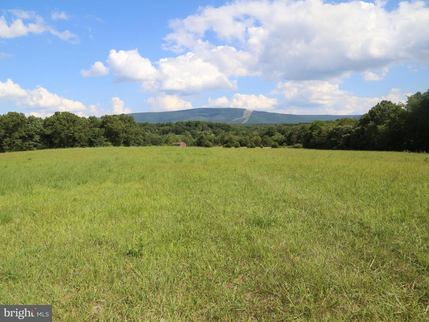 Land for Sale at Spaid Rd Yellow Spring, West Virginia 26865 United States