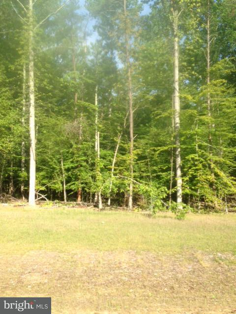 Land for Sale at 14650 Gallant Ln Waldorf, Maryland 20601 United States
