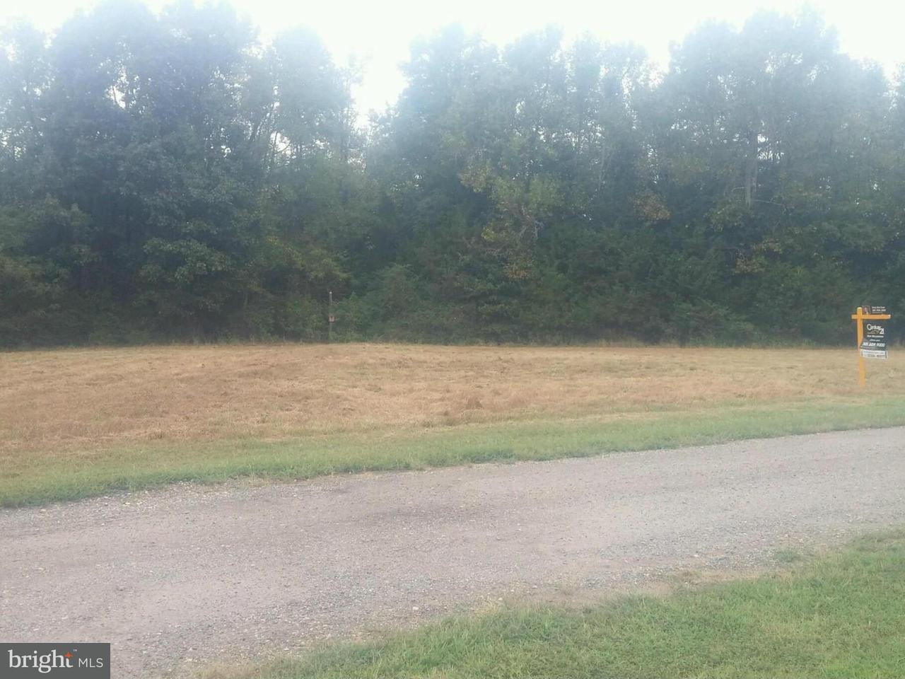 Land for Sale at 9860 Sodus Manor Pl Faulkner, Maryland 20632 United States