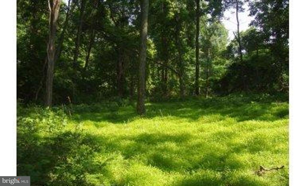 Land for Sale at 0 Whiskey Still Rd Linden, Virginia 22642 United States