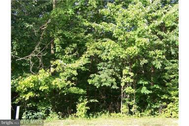Additional photo for property listing at Ellen Dr  Basye, Virginia 22810 United States