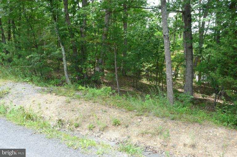 Additional photo for property listing at Dale  Basye, Virginia 22810 United States
