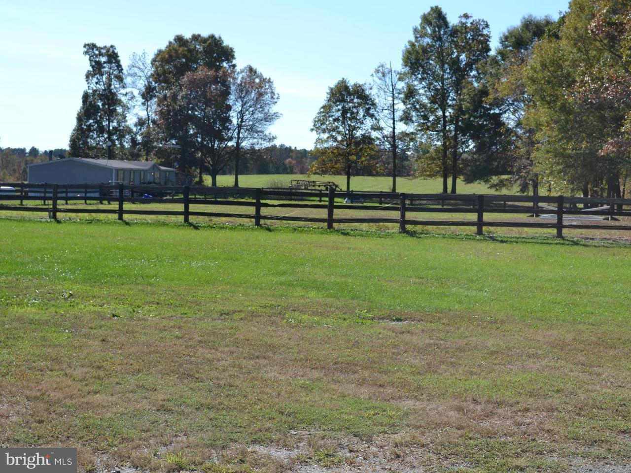 Terrain pour l Vente à 8401 Curtis Lane 8401 Curtis Lane Spotsylvania, Virginia 22551 États-Unis