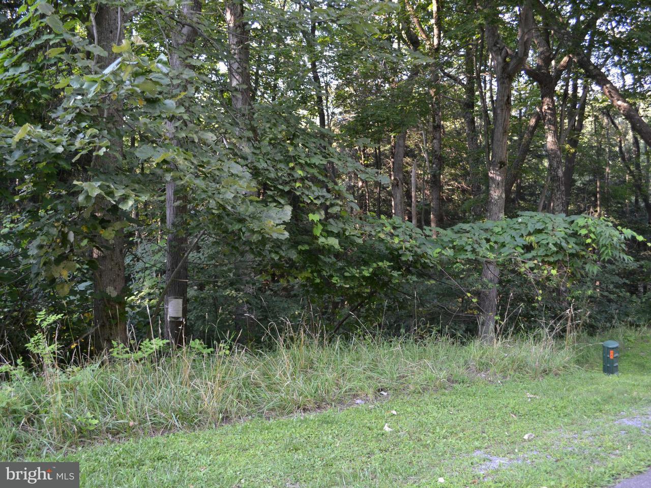Additional photo for property listing at 13 Basswood Way  Oakland, Maryland 21550 United States