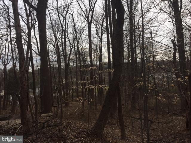 Land for Sale at Long Green Rd Glen Arm, Maryland 21057 United States