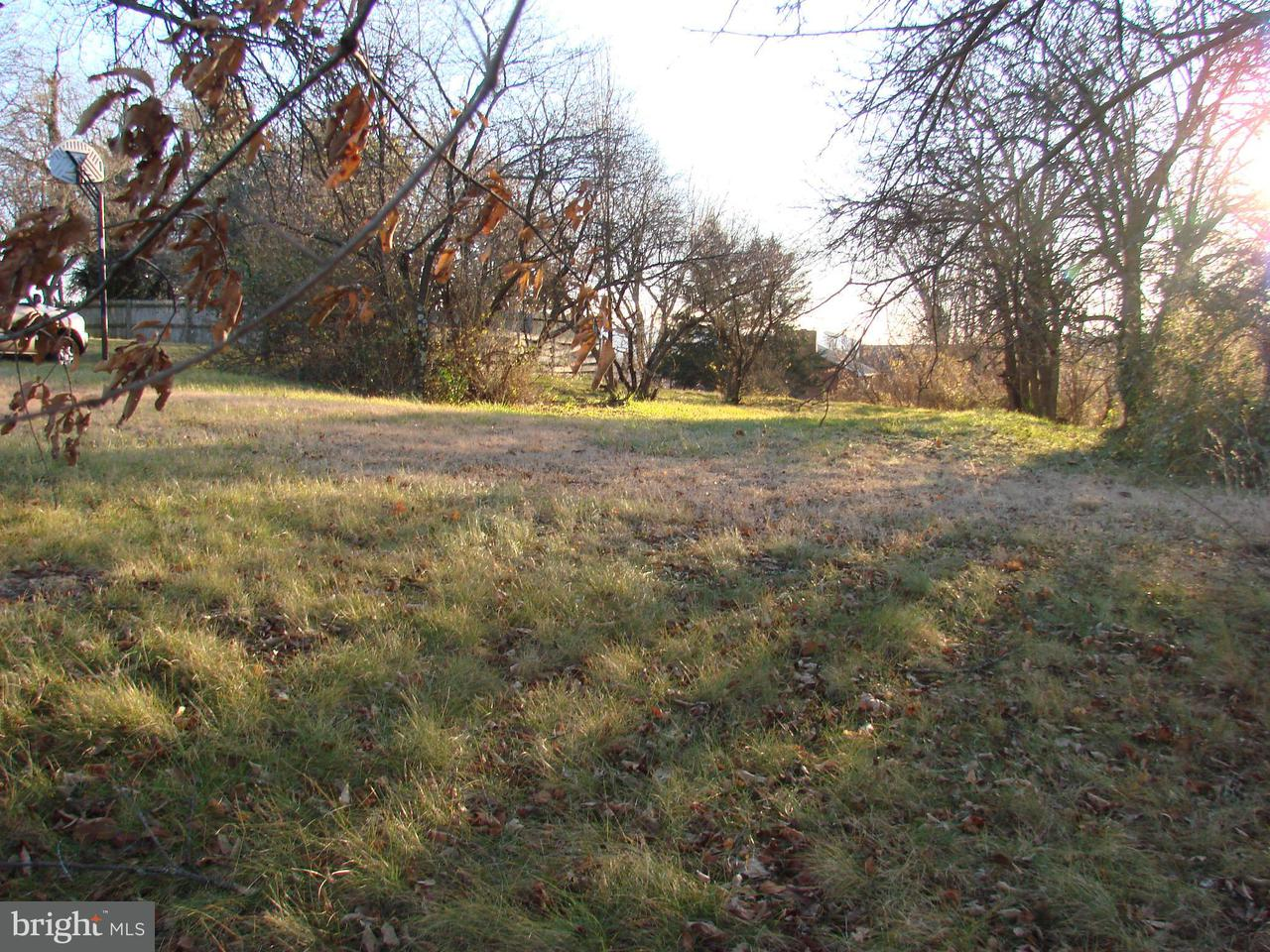 Land for Sale at Luray Ave. Luray, Virginia 22835 United States