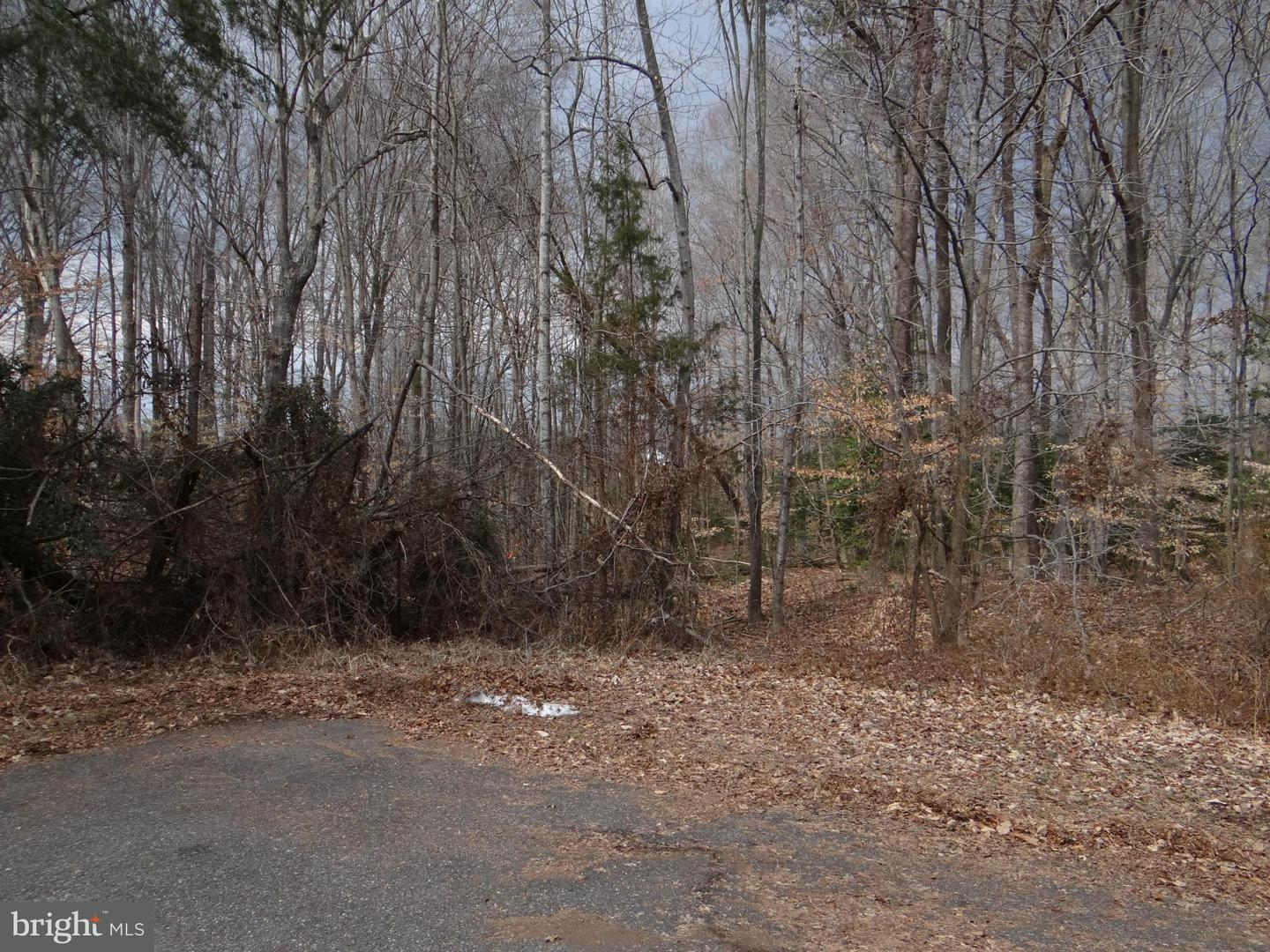 Land for Sale at Clifford Dr Waldorf, Maryland 20601 United States