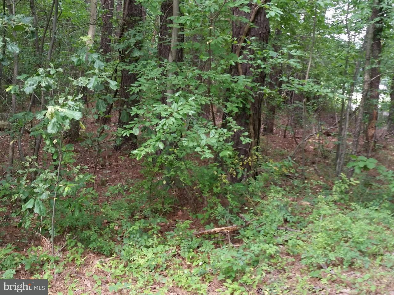 Photo of home for sale at Buck Rub Lot #2 Road, Trappe MD
