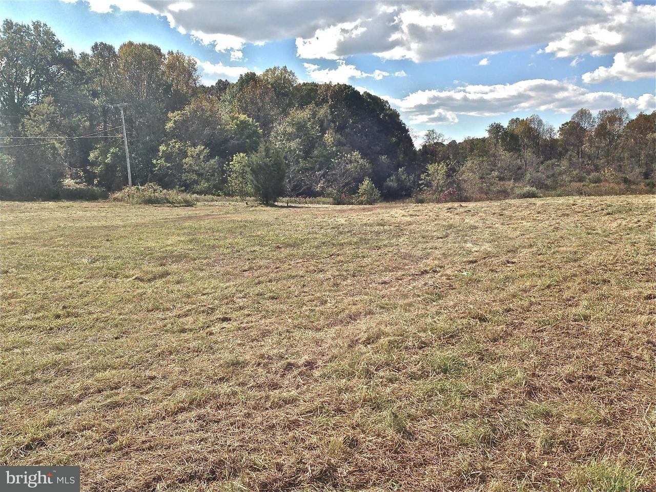 Land for Sale at Rixeyville Road Rixeyville Road Culpeper, Virginia 22701 United States