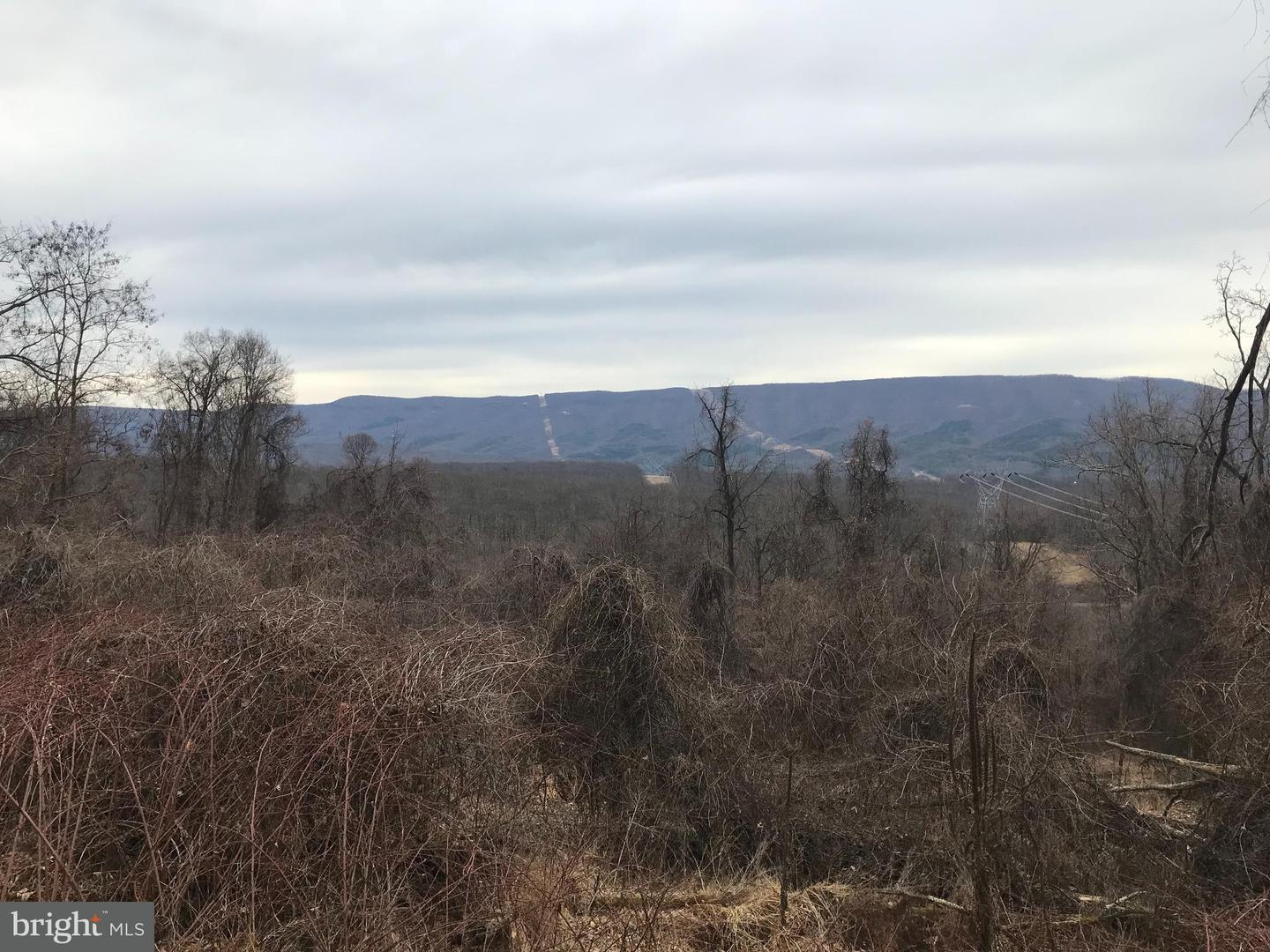 Land for Sale at High Knob Rd Old Fields, West Virginia 26845 United States