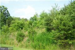 Land for Sale at 6316 Chickahominy Ct Orange, Virginia 22960 United States