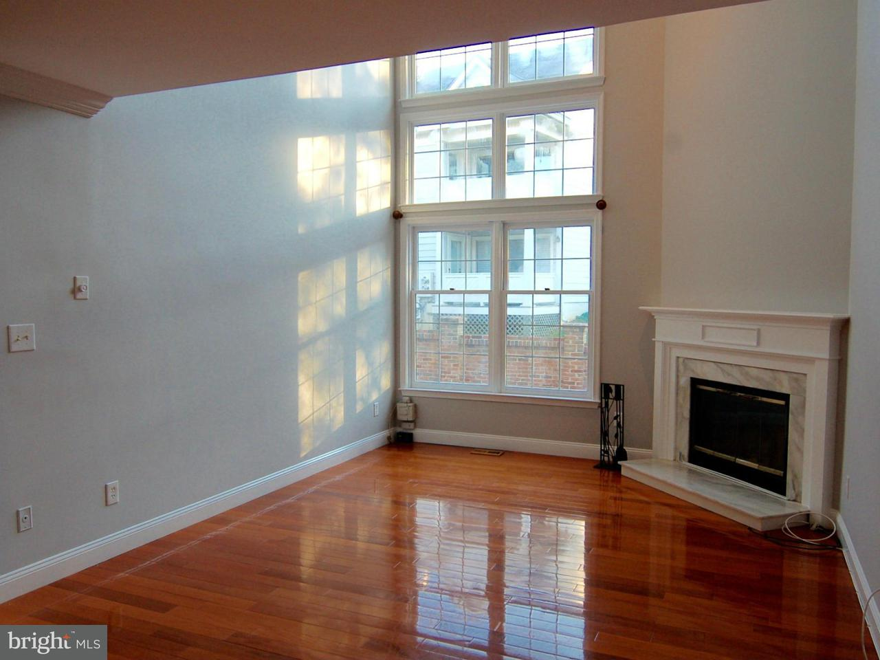 Other Residential for Rent at 10928 Bloomingdale Dr North Bethesda, Maryland 20852 United States