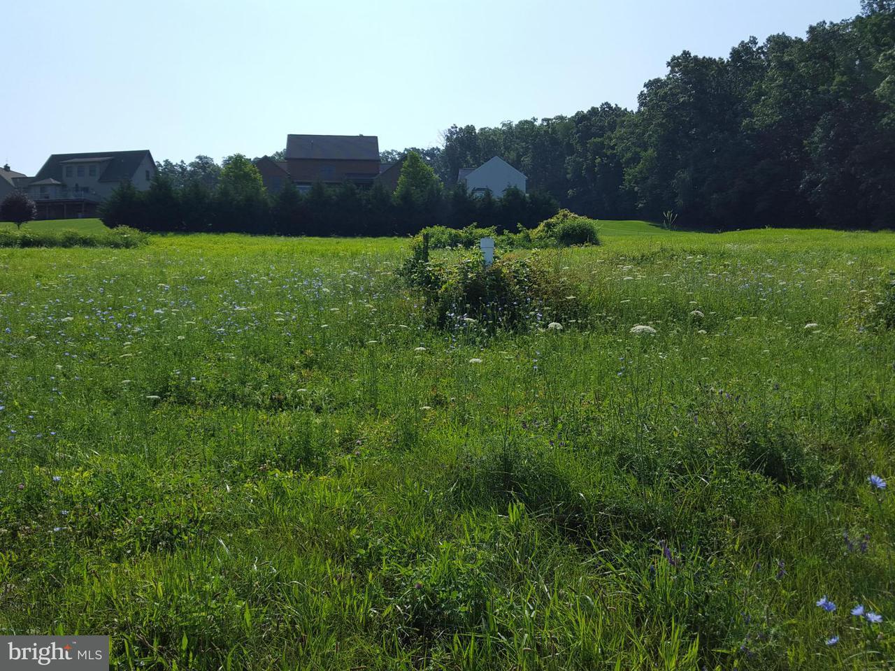 Land for Sale at Upper Edgemont Rd Waynesboro, Pennsylvania 17268 United States