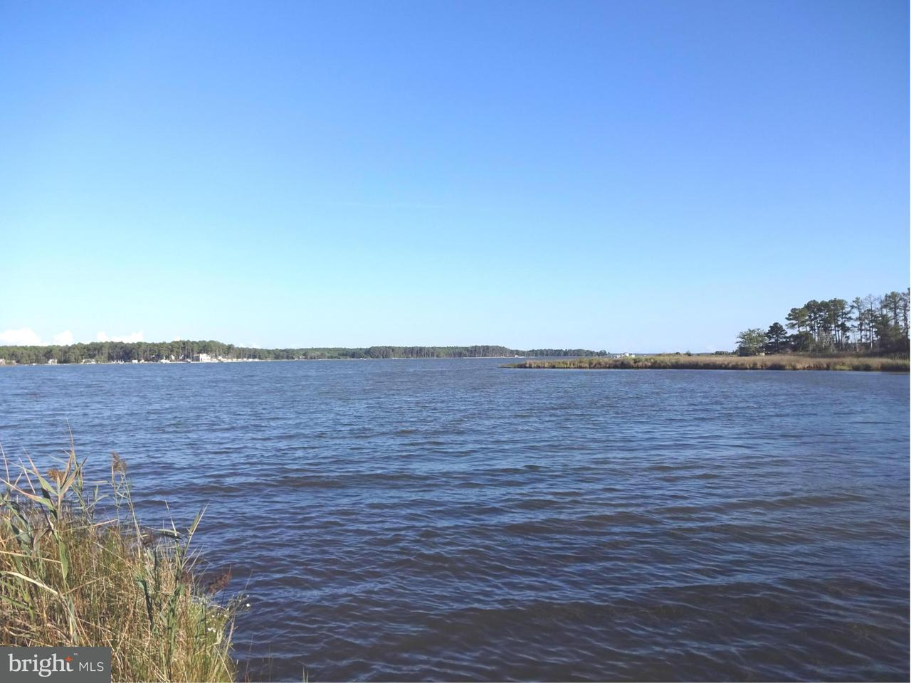 Land for Sale at Ragged Point Rd Cambridge, Maryland 21613 United States