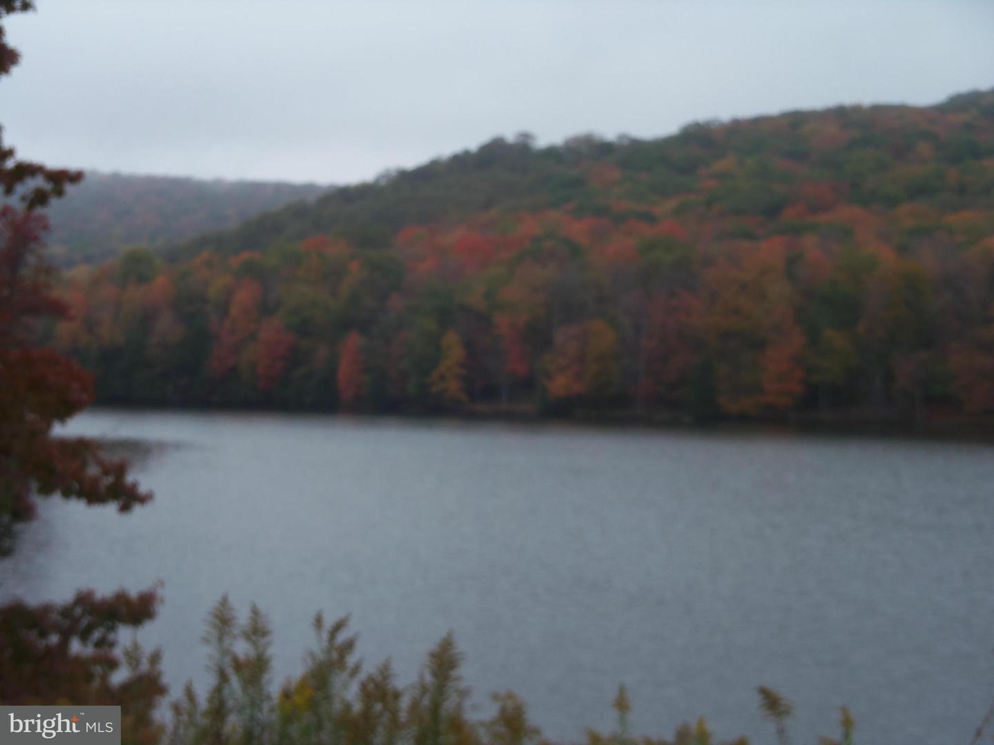 Additional photo for property listing at 3lot Alpine Dr  Terra Alta, West Virginia 26764 United States