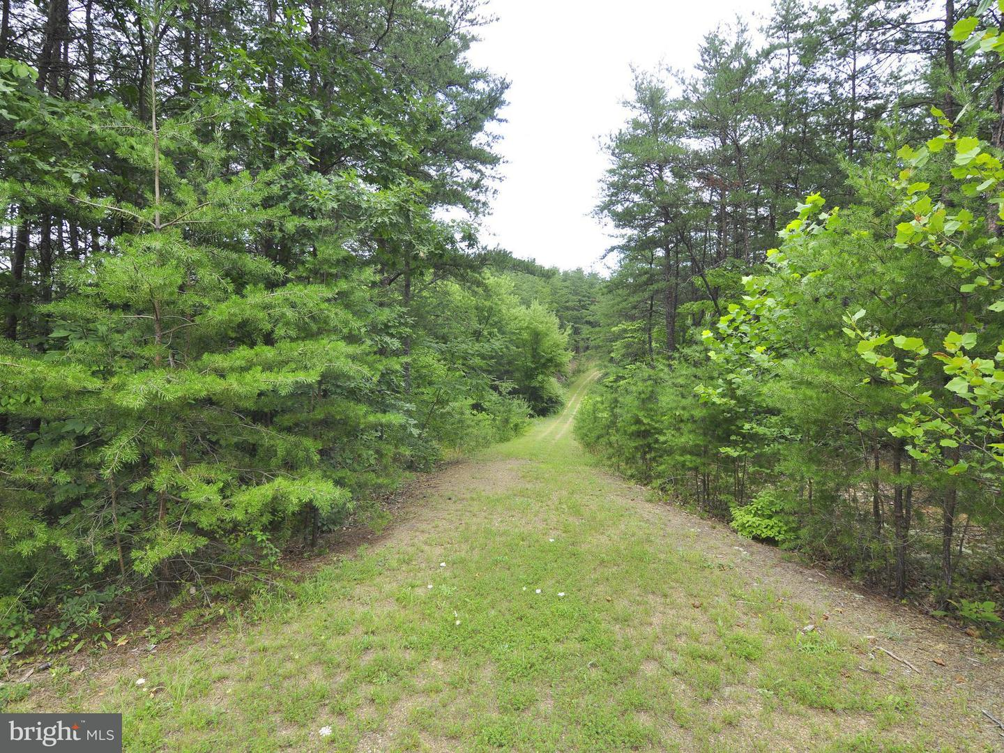 Land for Sale at 124 Donegal Ln Berkeley Springs, West Virginia 25411 United States