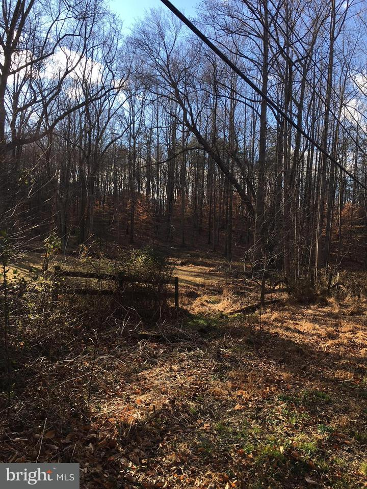 Land for Sale at 10223 Beach Mill Rd Sw 10223 Beach Mill Rd Sw Great Falls, Virginia 22066 United States