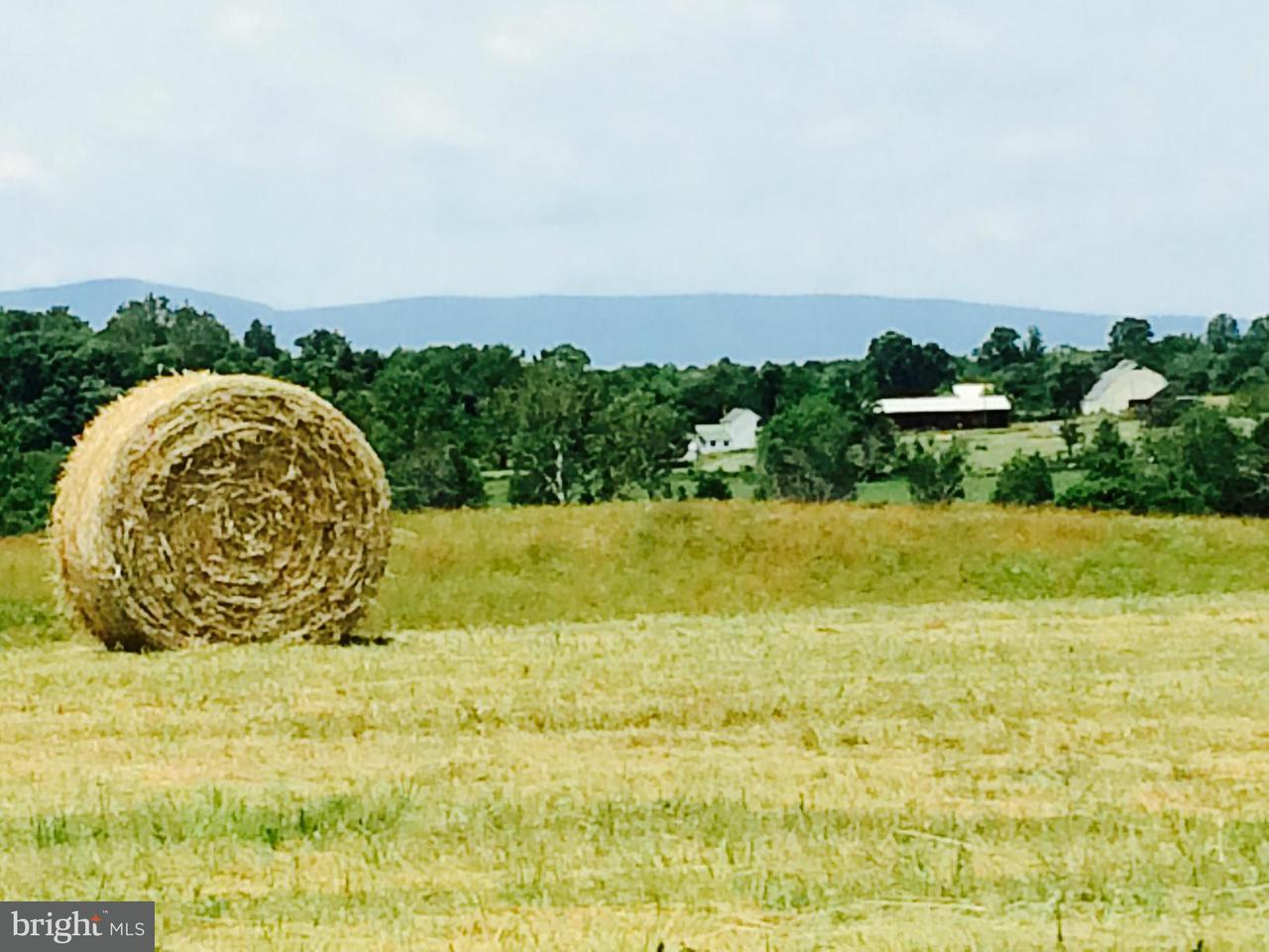 Land for Sale at 11069 Colline Drive 11069 Colline Drive Marshall, Virginia 20115 United States