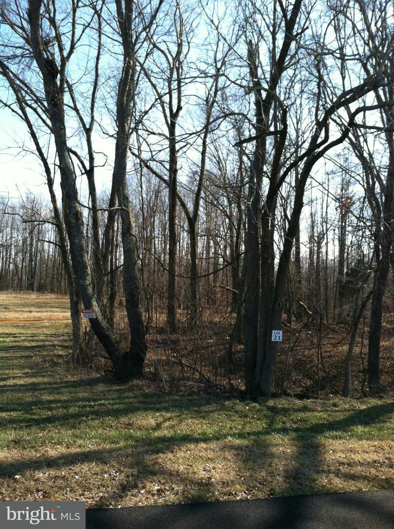 Land for Sale at 14436 Frontier Trails Ct Waldorf, Maryland 20601 United States