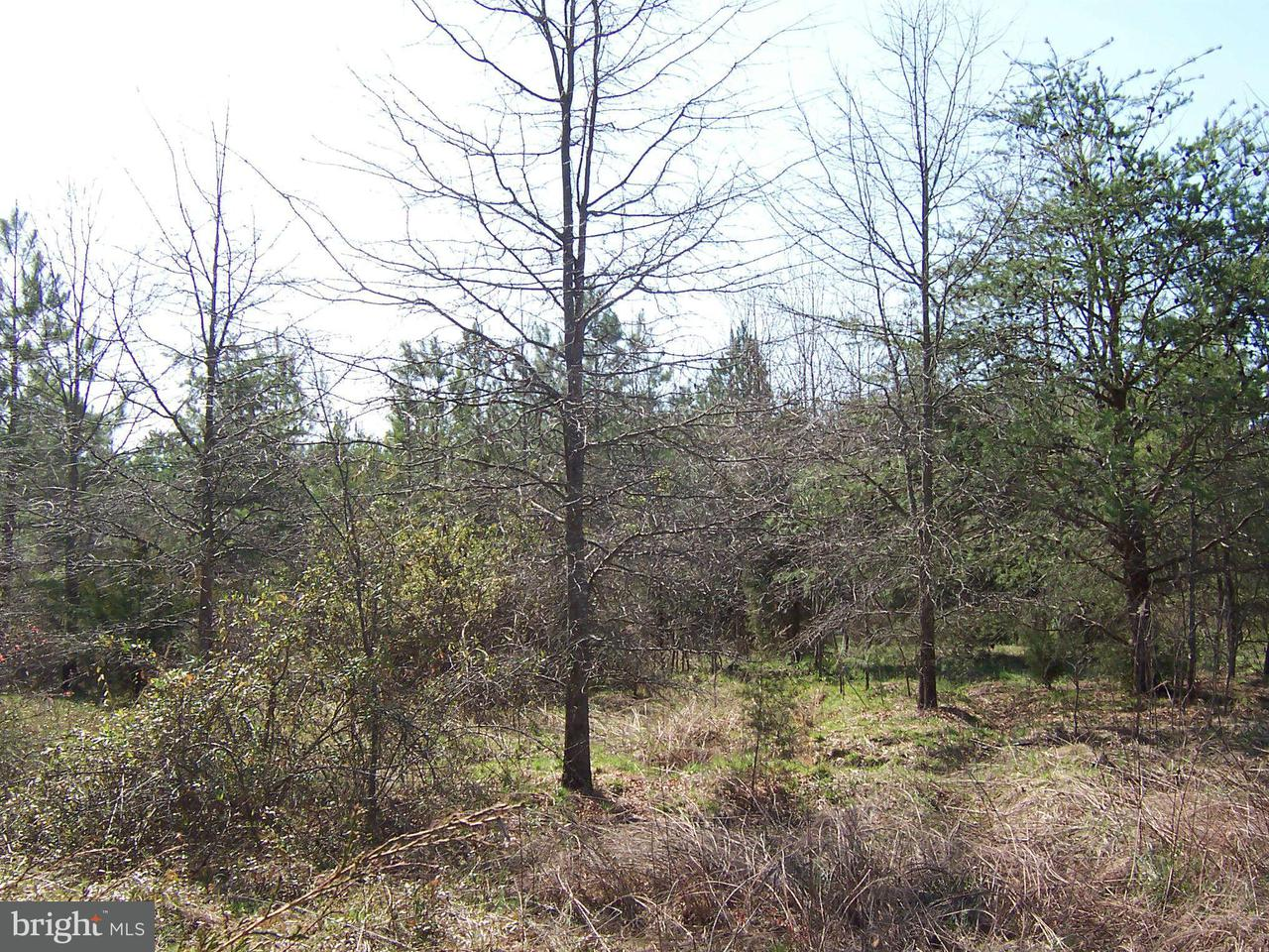 Land for Sale at Mary Lee Dr Doswell, Virginia 23047 United States