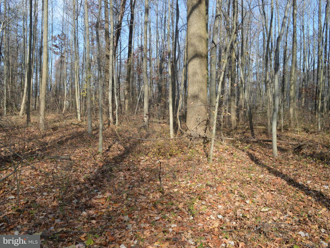 Land for Sale at Joppa At I-95 Rd Perry Hall, Maryland 21128 United States