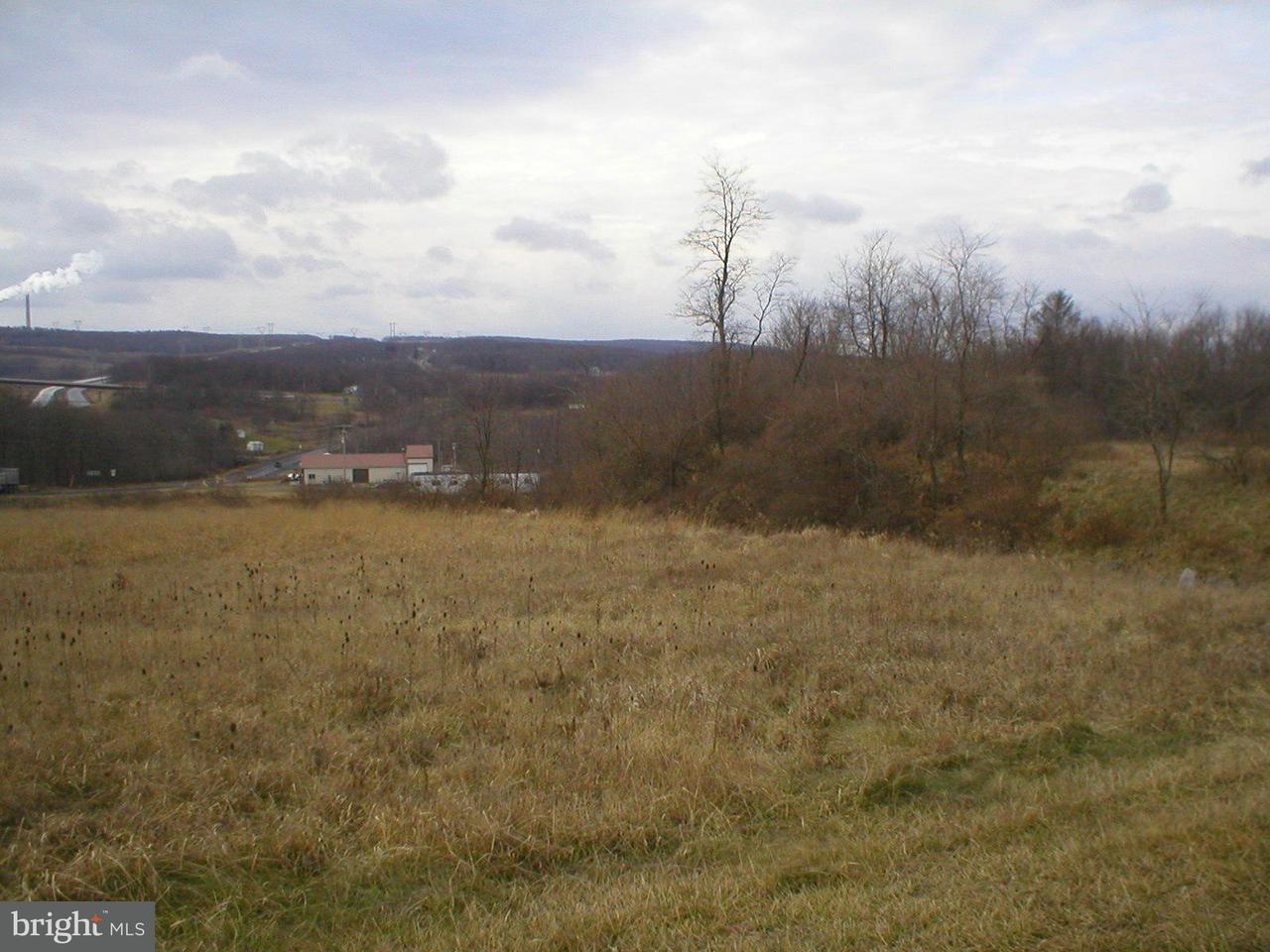 Land for Sale at 4293 Union Highway Mount Storm, West Virginia 26739 United States
