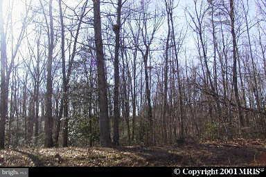 Land for Sale at 3351 Fisherman Way SW Bumpass, Virginia 23024 United States