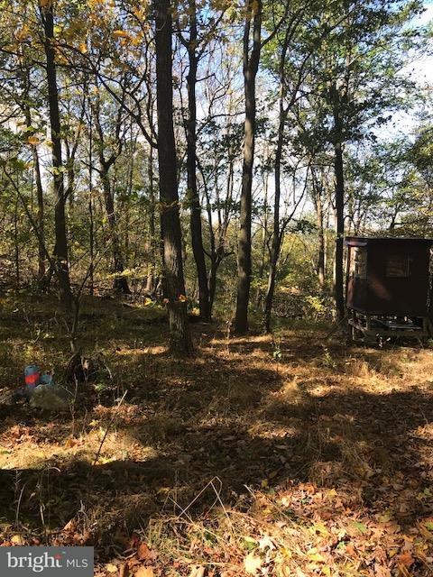 Land for Sale at Upper Horse Valley Rd Upperstrasburg, Pennsylvania 17265 United States