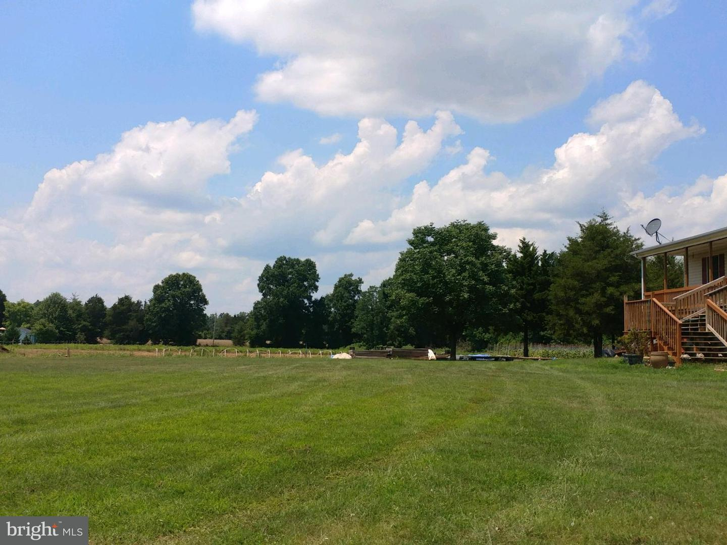 Farm for Sale at 14493 Berry Hill Rd Elkwood, Virginia 22718 United States