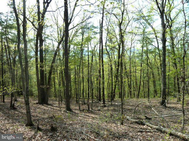 Additional photo for property listing at Supinlick Ridge Rd  Mount Jackson, Virginia 22842 United States