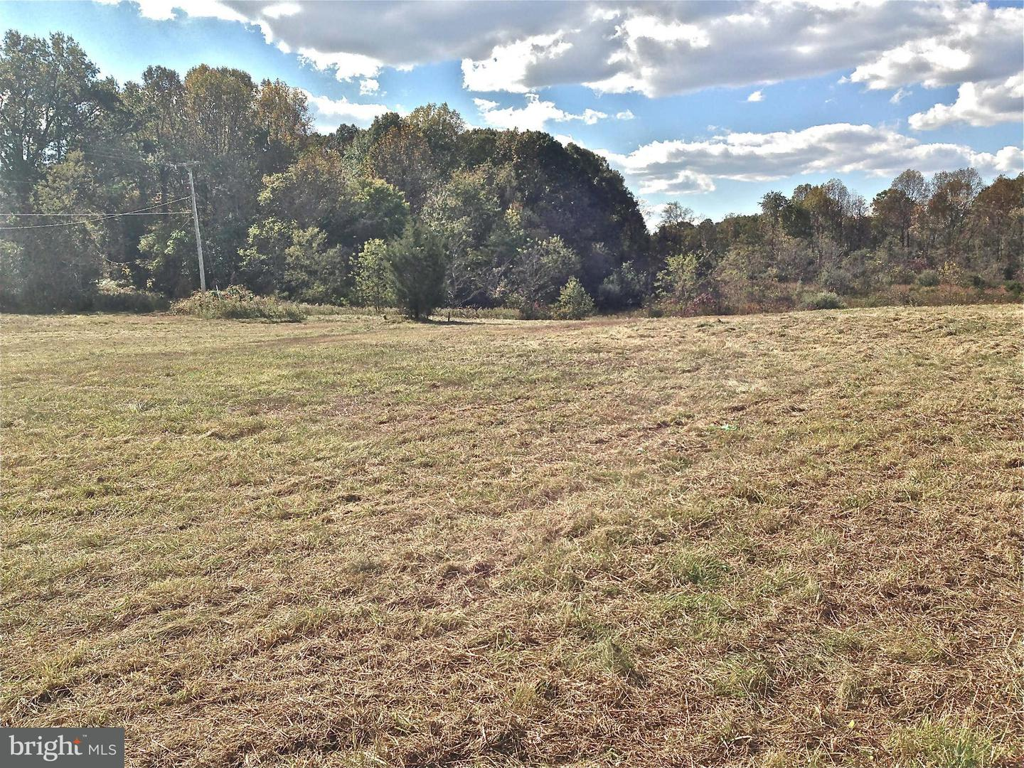 Land for Sale at Rixeyville Rd Culpeper, Virginia 22701 United States