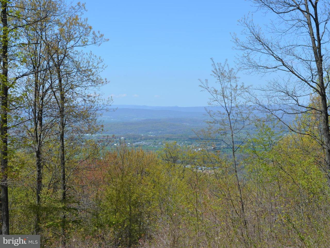 Land for Sale at Rt 211 New Market, Virginia 22844 United States