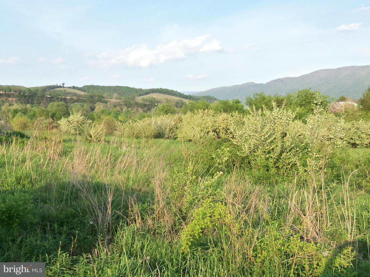 Land for Sale at 5 Fisher Lane Moorefield, West Virginia 26836 United States